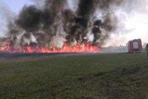 Podsumowanie tygodnia strażackiego: 5 pożarów i wypadki drogowe
