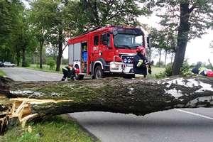Mocno wiało i padało. Najwięcej pracy strażacy mieli przy połamanych drzewach