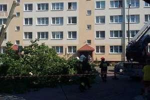 Chwile grozy, zerwany dach w przedszkolu i powalone drzewa