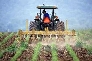 Rolnicy przez pogodę stracili w tym roku prawie miliard złotych
