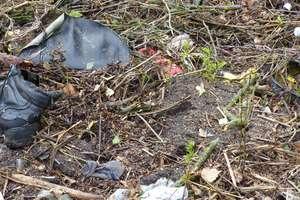 14 dni na uprzątnięcie śmieci