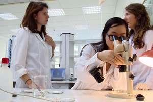 Białowieskie grzyby pomogą leczyć raka?