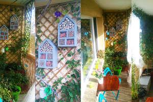 Który ogród i który balkon są najpiękniejsze? - głosowanie zakończone