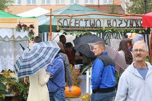 Rolnicy z powiatu olsztyńskiego zakończyli żniwa. Zobacz zdjęcia!