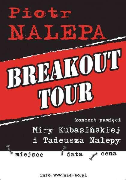 Piotr Nalepa Tour- Zaduszki bluesowe w Sowie - full image