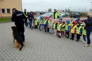 Przedszkolaki już wiedzą jak bezpiecznie przejść przez jezdnię