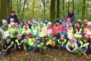 Przedszkolaki z wizytą w parku