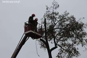 Strażacy wycięli drzewo przy kościele