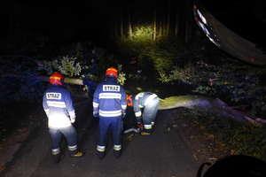 Uwaga! Silny wiatr w powiecie: połamane drzewa i gałęzie