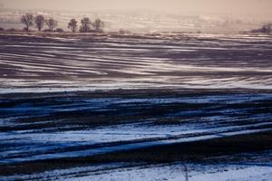 Troje fotografów z Bisztynka z nagrodami w konkursie Izby Rolniczej