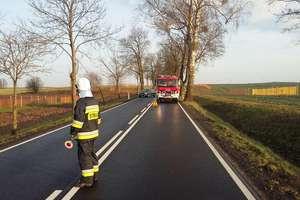 Podsumowanie tygodnia strażackiego: śmiertelne potrącenie rowerzysty
