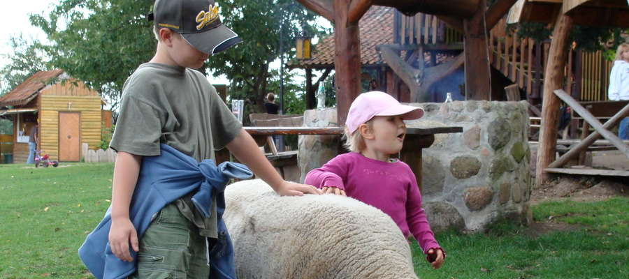 Hodowla owiec na wielu terenach jest ważnym elementem folkloru i kultury agrarnej, odgrywa także dużą rolę w agroturystyce