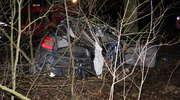 Tragiczne skutki zderzenia z drzewem