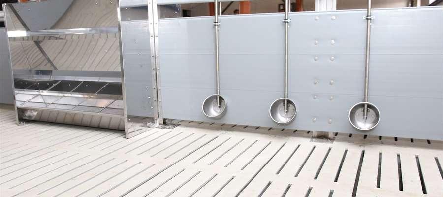 Posadzki w kojcach pokryte atestowanymi szczelinowymi rusztami betonowymi o długości 2,7m, spełniające wszelkie wymogi weterynaryjne. Powierzchnia szczelin wynosi ok. 15 proc. ogólnej powierzchni podłogi co zapewnia utrzymanie czystości