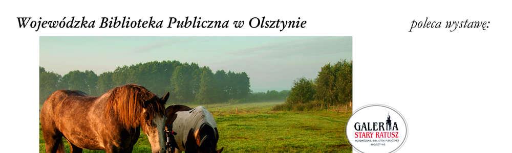 Wernisaż wystawy Mój przyjaciel koń