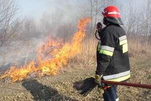Strażacy apelują o niewypalanie traw