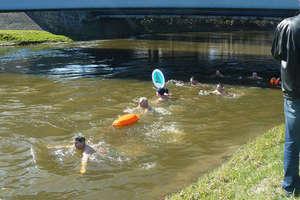 IV pływanie morsów w rzece Łynie