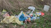 Wśród nielegalnie wyrzuconych śmieci znaleźliśmy kartkę z nazwiskiem ich właścicielki