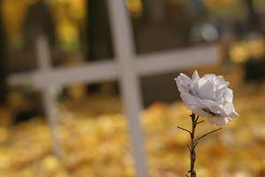 Savoir-vivre na cmentarzach