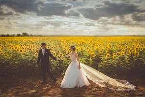 Demograf: liczba małżeństw będzie się zmniejszać