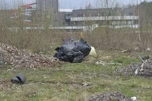 Pole Bitwy Heilsberskiej zamienia się w wysypisko śmieci