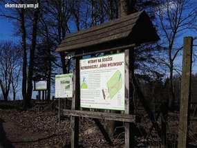 Lapidarium Geologiczne i ścieżka przyrodnicza na Wzgórzach Dylewskich