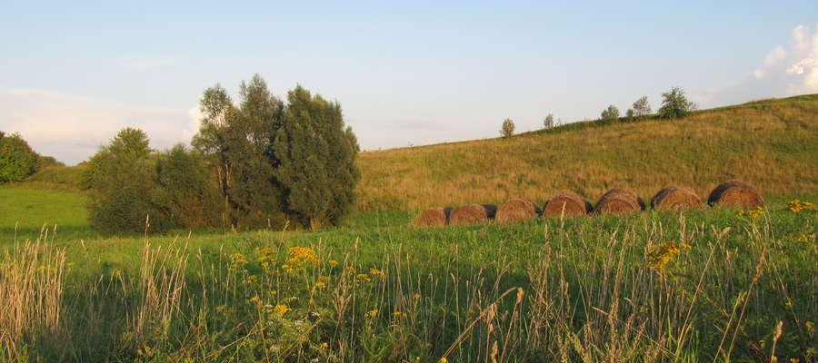 Obszar Natura 2000 w woj. warmińsko-mazurskim - Mazury Garbate, miejscowość Piaski pod Ełkiem