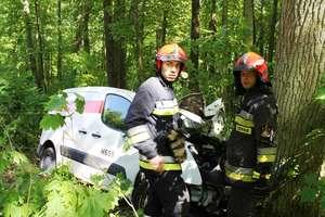 Wypadek w pobliżu Krzyżewa. Kierowca zjechał z drogi i uderzył w drzewo