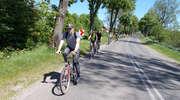 Wycieczka rowerowa. Zapraszają na zwiedzanie Żuław Wiślanych