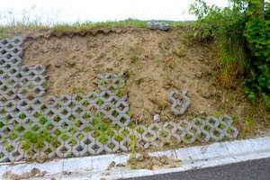 Następna kradzież kolekcjonera ażurów betonowych
