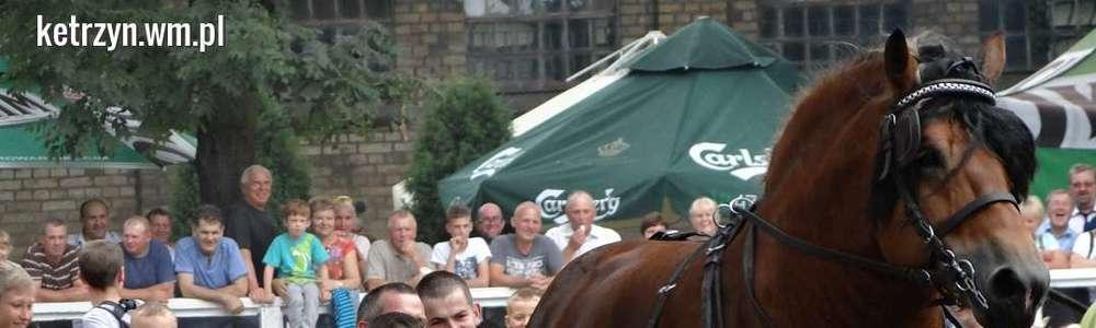 Czempionat koni ardeńskich na koniec gorącego weekendu