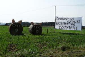 Święto plonów oraz Festiwal Klusek i Makaronu w Lipowcu