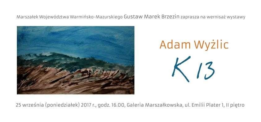 Prace Adama Wyżlica w Galerii Marszałkowskiej - full image