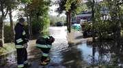 Woda z rzeki Dzierzgoń zalewa gospodarstwo. Na miejscu są strażacy [zdjęcia]