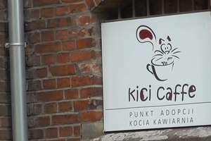 Wyjątkową kawiarnię w Olsztynie czeka rewolucja?