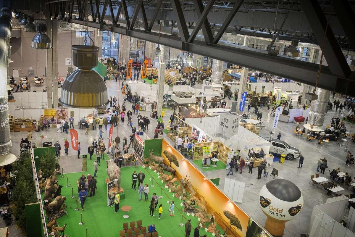 Sokoły, broń palna i dziczyzna w Expo Mazury - full image