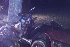 Uderzył w drzewo, skasował samochód