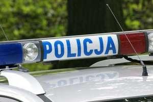 Złodzieje chryzantem wpadli w ręce policji