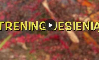 Jesienny trening na powietrzu czyni cuda