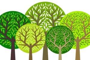 """Projekt ekologiczny """"Eko-świadomi"""" II w SOSW w Węgorzewie"""