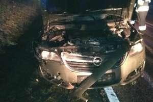 Samochód osobowy zderzył się z łosiem
