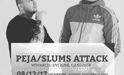 Peja i Slums Attack na scenie w Adergrancie