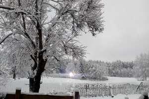Zima na Warmii i Mazurach. Jakimi widokami przywitał nas piątkowy poranek? [ZDJĘCIA CZYTELNIKÓW]