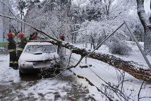 Powrót zimy: fatalne warunki na drogach naszego regionu. Kiedy nastąpi poprawa?