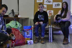 Wsparli bezdomne zwierzaki przed świętami