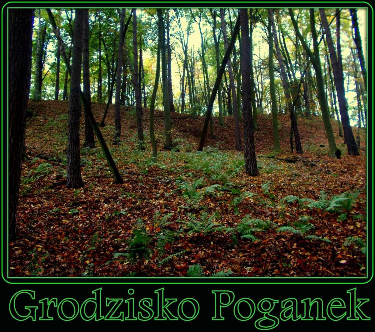 Historia Grodziska Poganek - full image