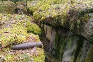 Pocisk przeciwpancerny w lesie. Saperzy zabezpieczyli niewybuch
