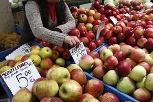 Ceny jabłek oszalały. Zastąpią je tańsze pomarańcze?
