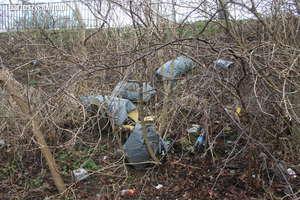 Wory pełne śmieci za starym mostem w Bartoszycach