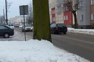 Jakie piękne, niebezpieczne dla ludzi drzewo...